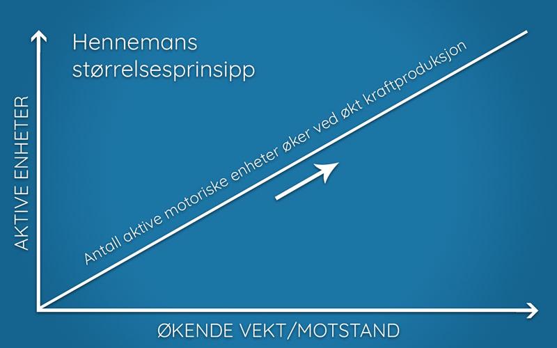 Illustrasjon av Hennemans størrelsesprinsipp